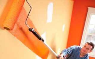 Покраска стен по штукатурке: выбор краски и пошаговая инструкция выполнения работ