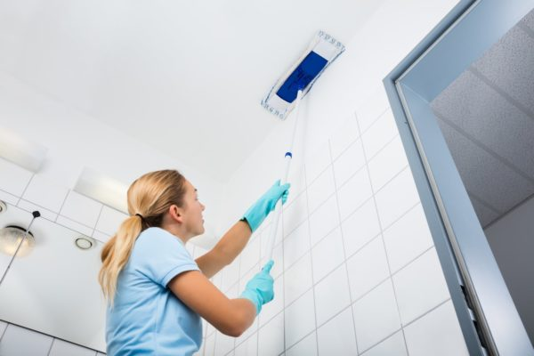 Возможность мыть потолок